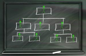 Organigramm um neue Funktionen als Logistikmeister auszuüben.