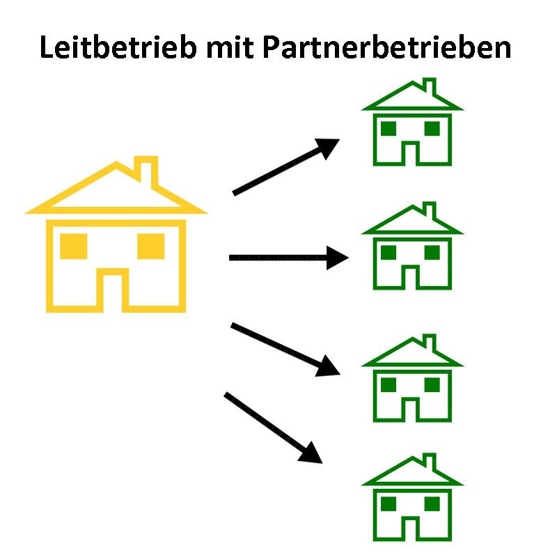 überbetriebliche Ausbildung als Leitbetrieb mit Partnerbetrieben